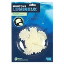 Moutons lumineux