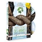 DVD L'intelligence des arbres