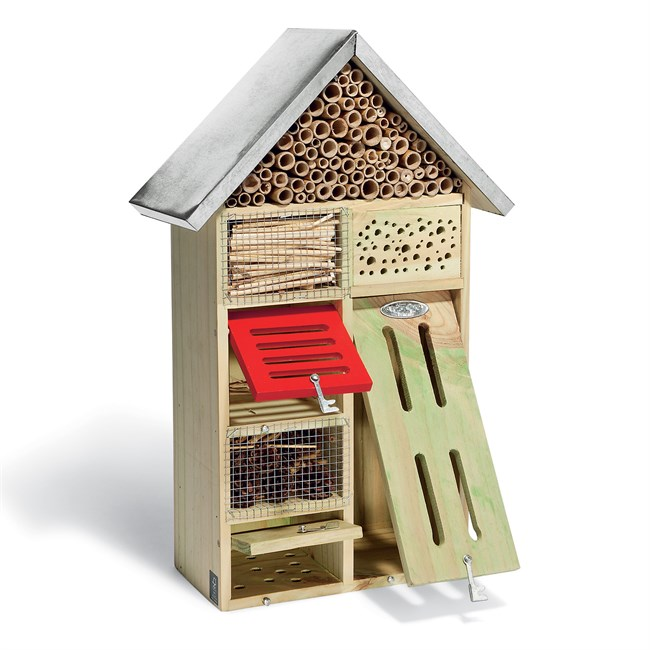 h tel insectes en bois nature d couvertes. Black Bedroom Furniture Sets. Home Design Ideas