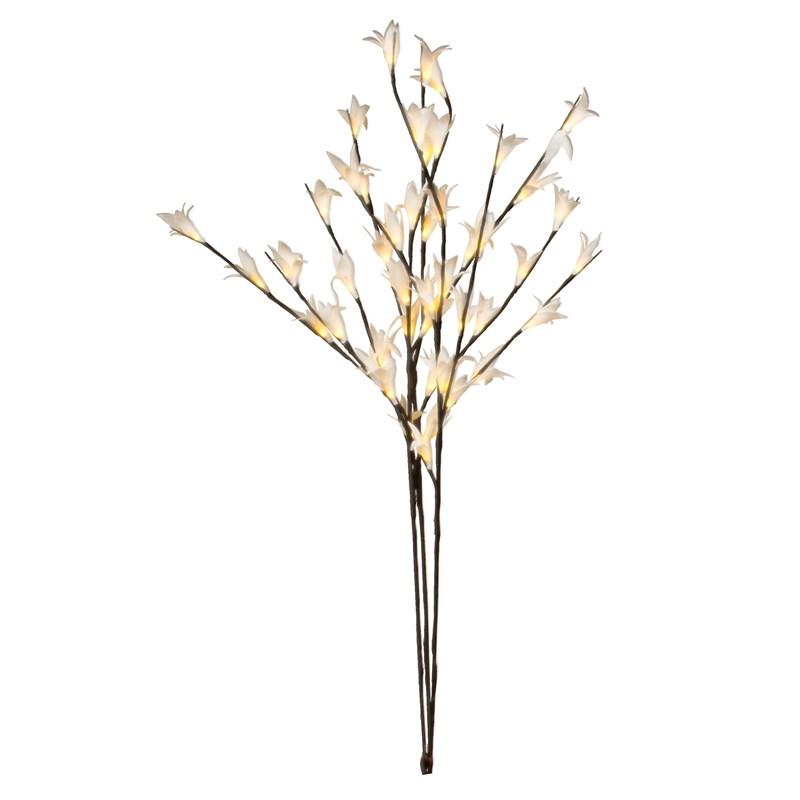 Fleurs De Calla Lumineuses Nature Decouvertes