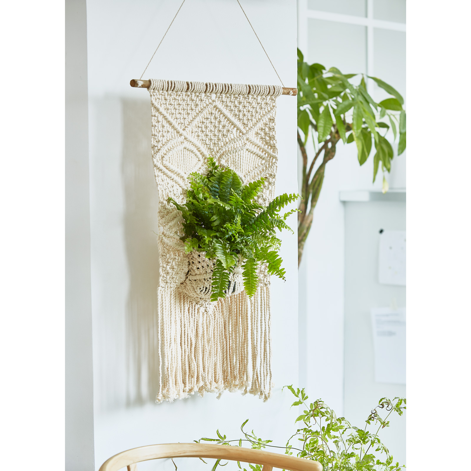 Suspension En Macrame Et Son Pot