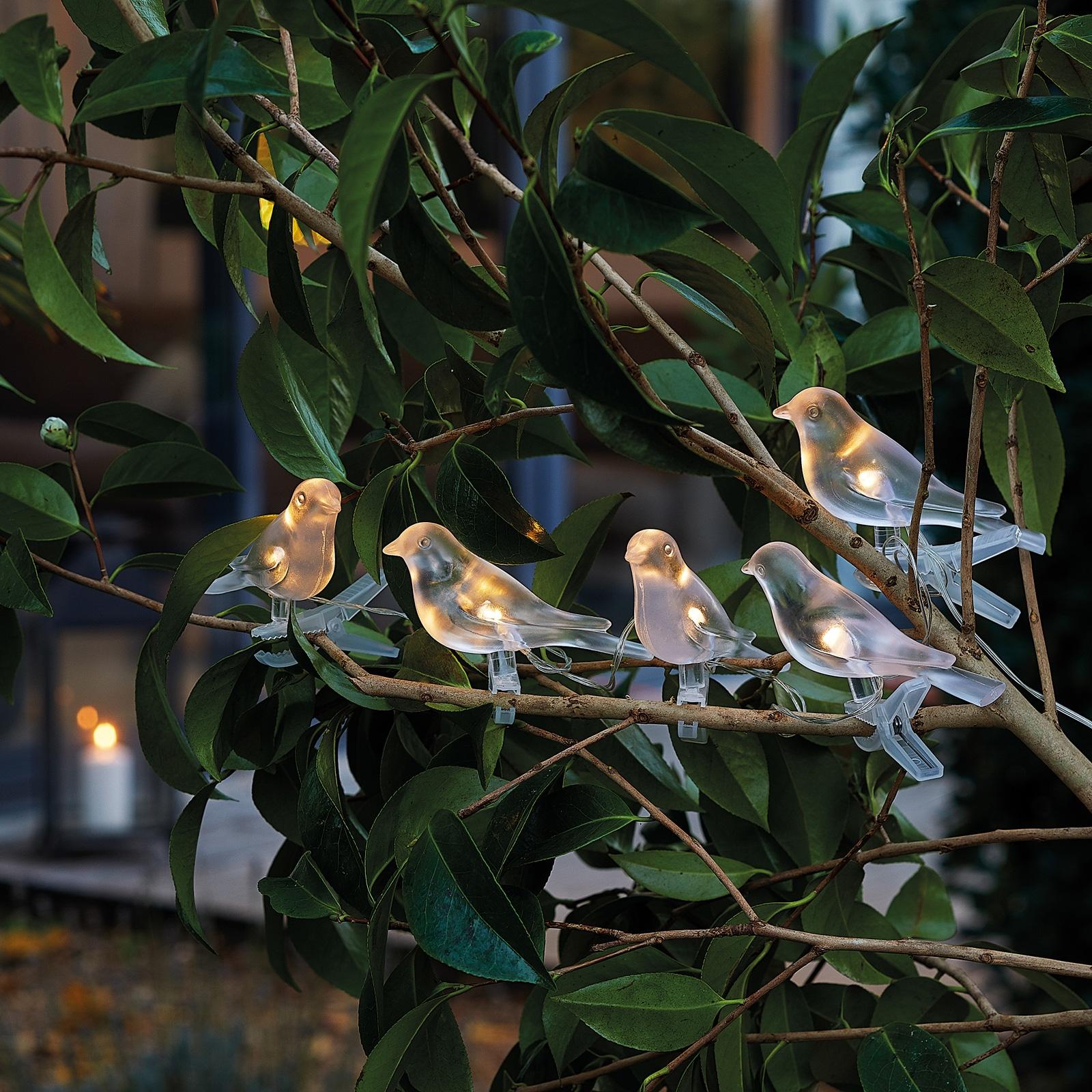 Guirlande Solaire Oiseaux De Nuit Nature Decouvertes