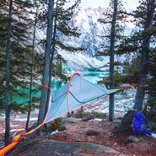 Tente Flite Forest Green Tentsile