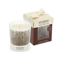 Bougie parfumée au Cèdre Esteban