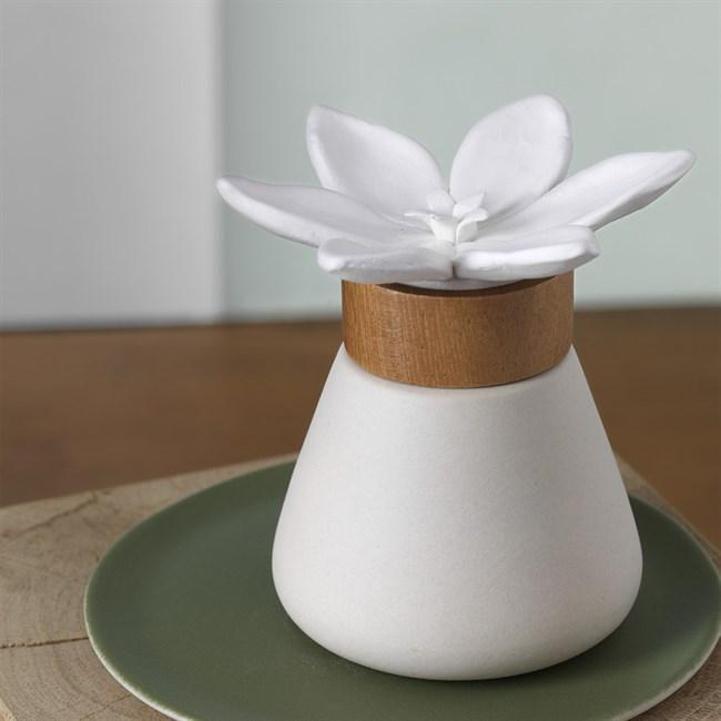 diffuseur de parfum bigaradier nature d couvertes. Black Bedroom Furniture Sets. Home Design Ideas