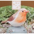 Oiseau sonore d'accueil orange