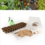 Coffret de légumes bios pour l'école