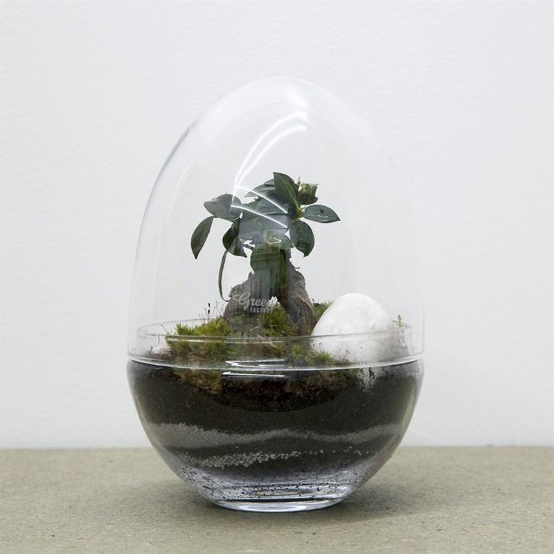 Terrarium Nature Decouvertes