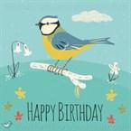 Carte anniversaire mésange bleue