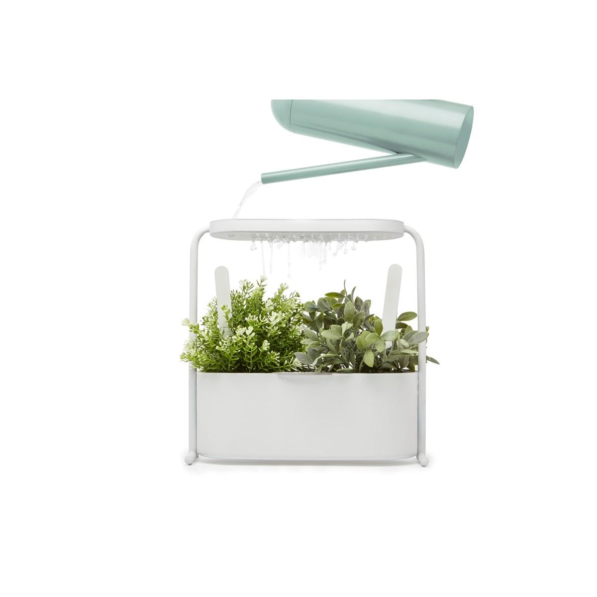 Plantes Aromatiques En Jardinière jardinière d'herbes aromatiques
