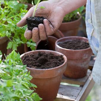 Offrir le meilleur du monde pour un monde meilleur nature d couvertes - Deco jardin nature et decouverte grenoble ...