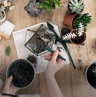 Id e cadeau nature d couvertes - Deco jardin nature et decouverte grenoble ...